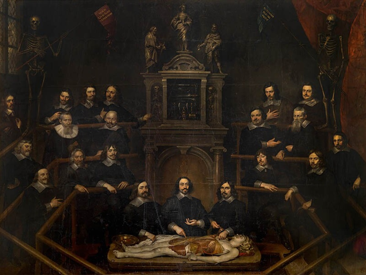 File:Frans Denys - The Anatomy Lesson of Dr. Joannes van Buyten.jpg ...