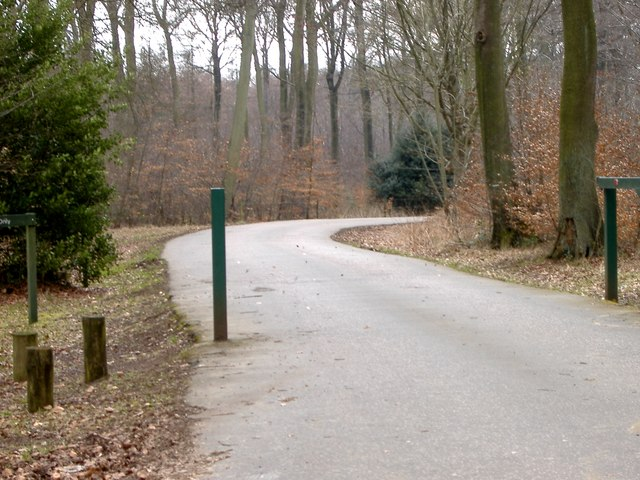 Hengrove Wood , Entrance to Wendover Woods - geograph.org.uk - 139495