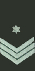 IDF Rank Chief Warrant Officer current embroidered.jpg