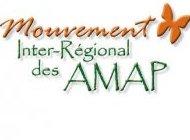Logo Miramap.jpg