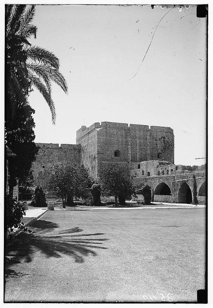 המבצר הצלבני בעכו