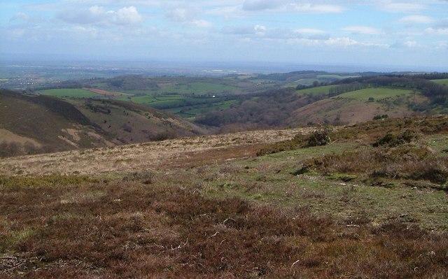 Quantocks near Wills Neck - geograph.org.uk - 1610988