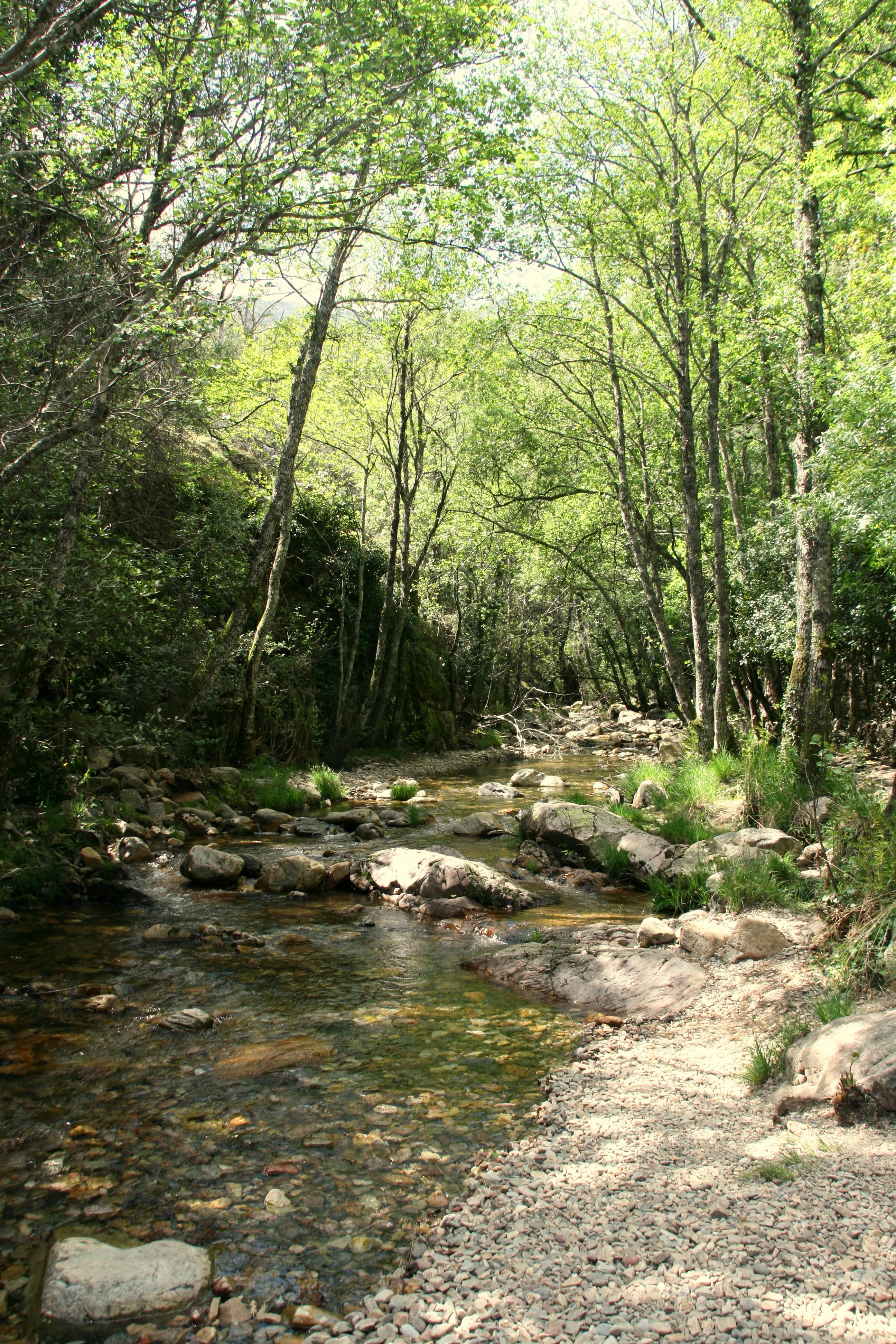 File Rio Batuecas 14 De Abril De 2017 Parque Natural De Las