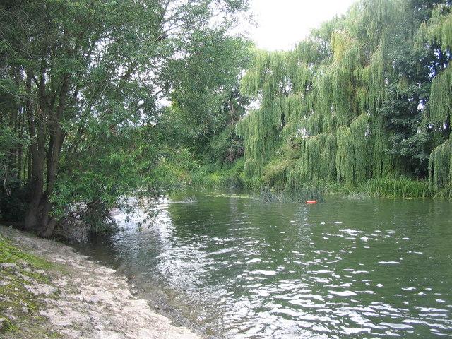 River Avon at Melksham - geograph.org.uk - 497024