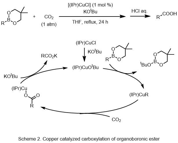 Skjema 2 Kobberkatalysert karboksylering av organoboronic ester