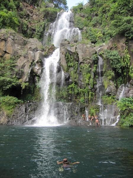 Bassin des Aigrettes — Wikipédia