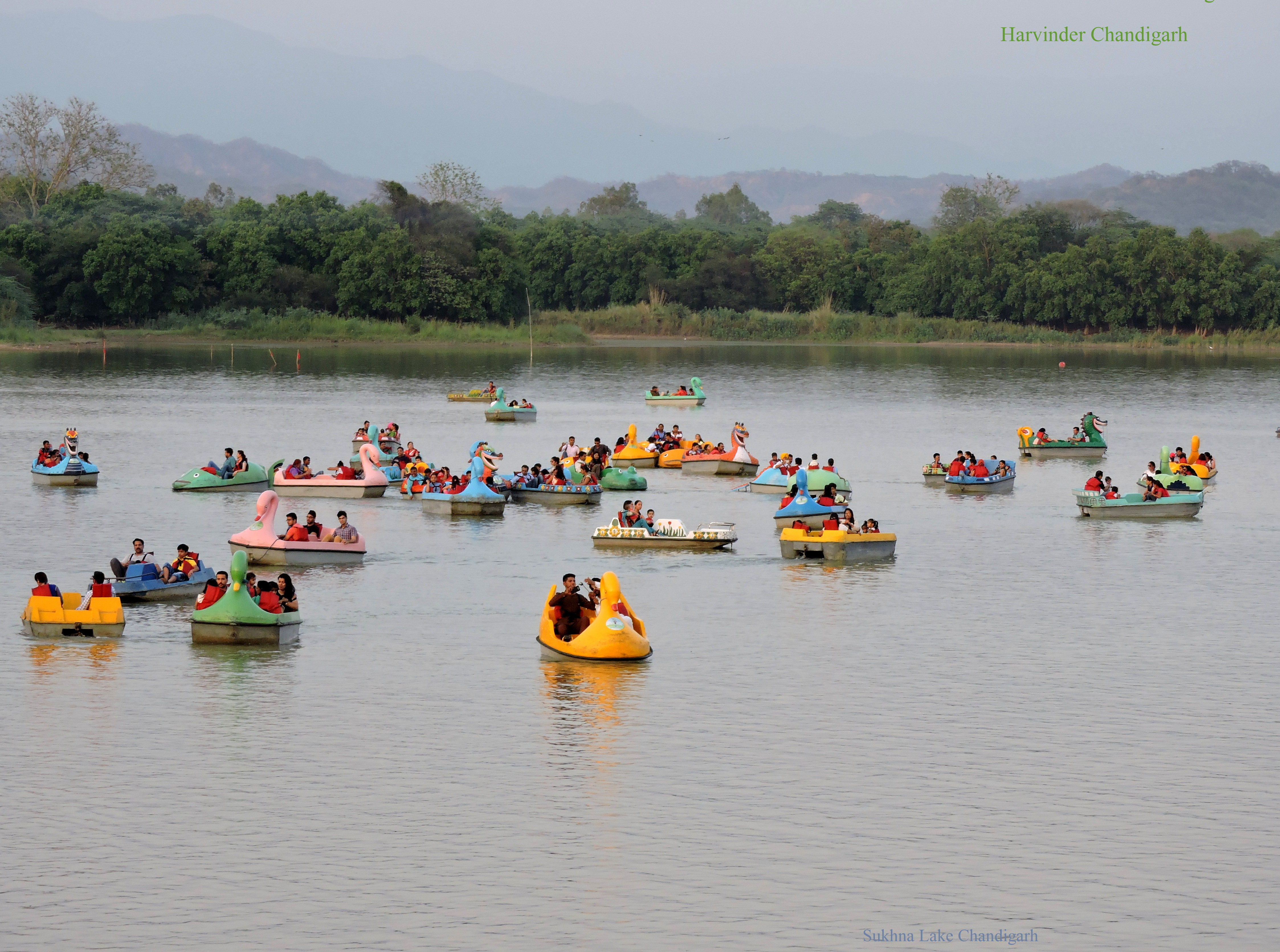 essay on sukhna lake chandigarh Chandigarh is the name of my city and it is known as the city beautiful  the lake  about which i am going to speak is known as sukhna lake.