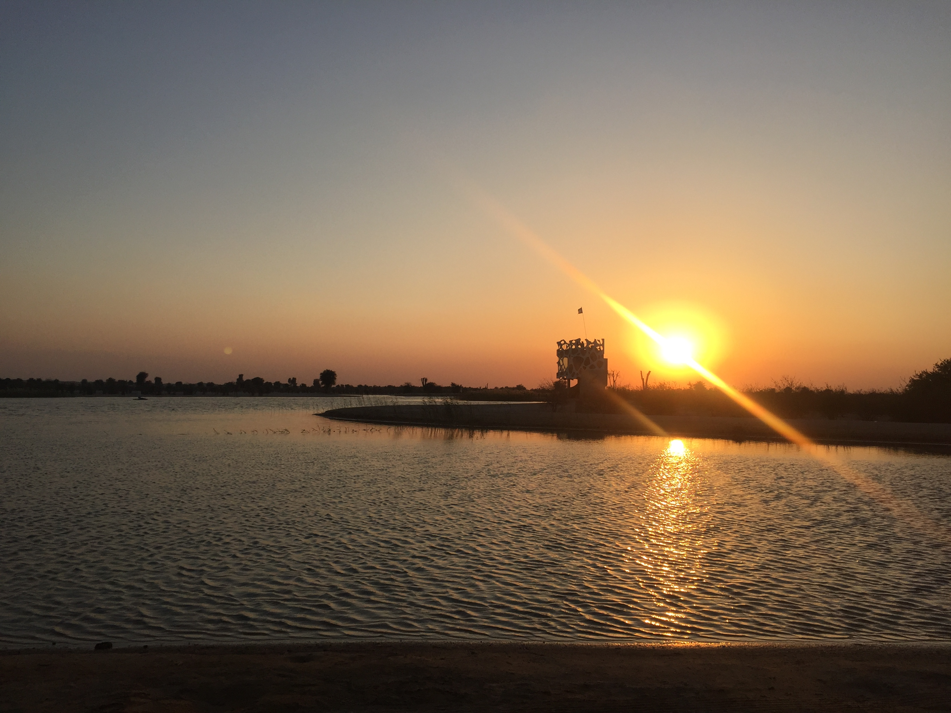 sunset at the desert Oasis