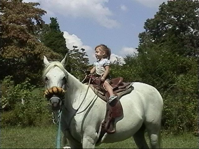 Horse Baby Girl Room