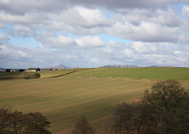 View to Sugar Loaf (596m) - geograph.org.uk - 1759497