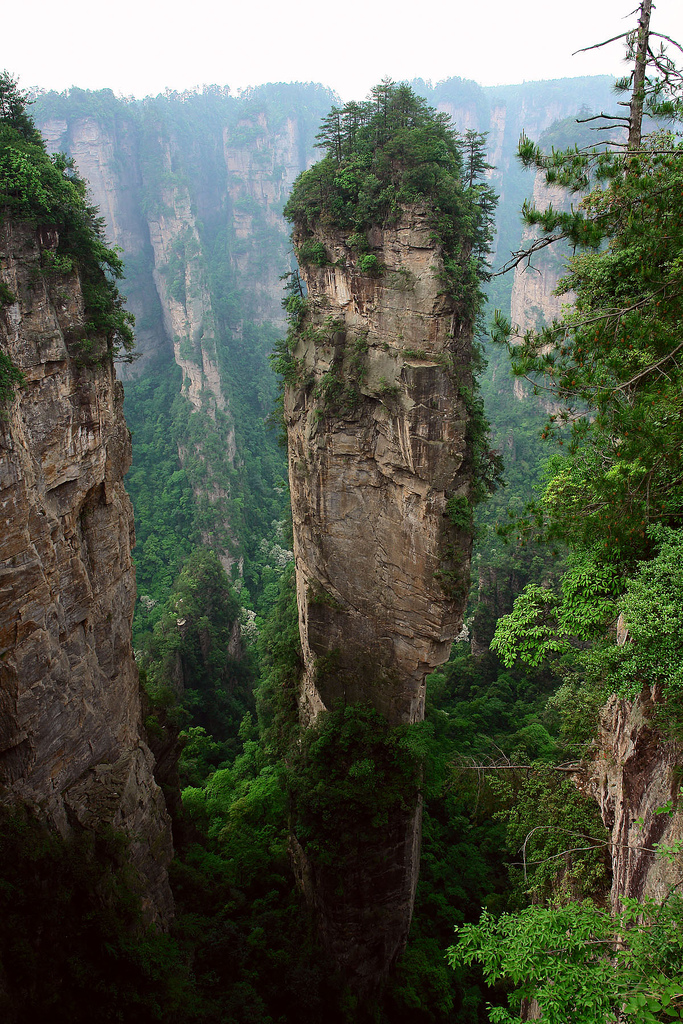 zhangjiaji rock forest