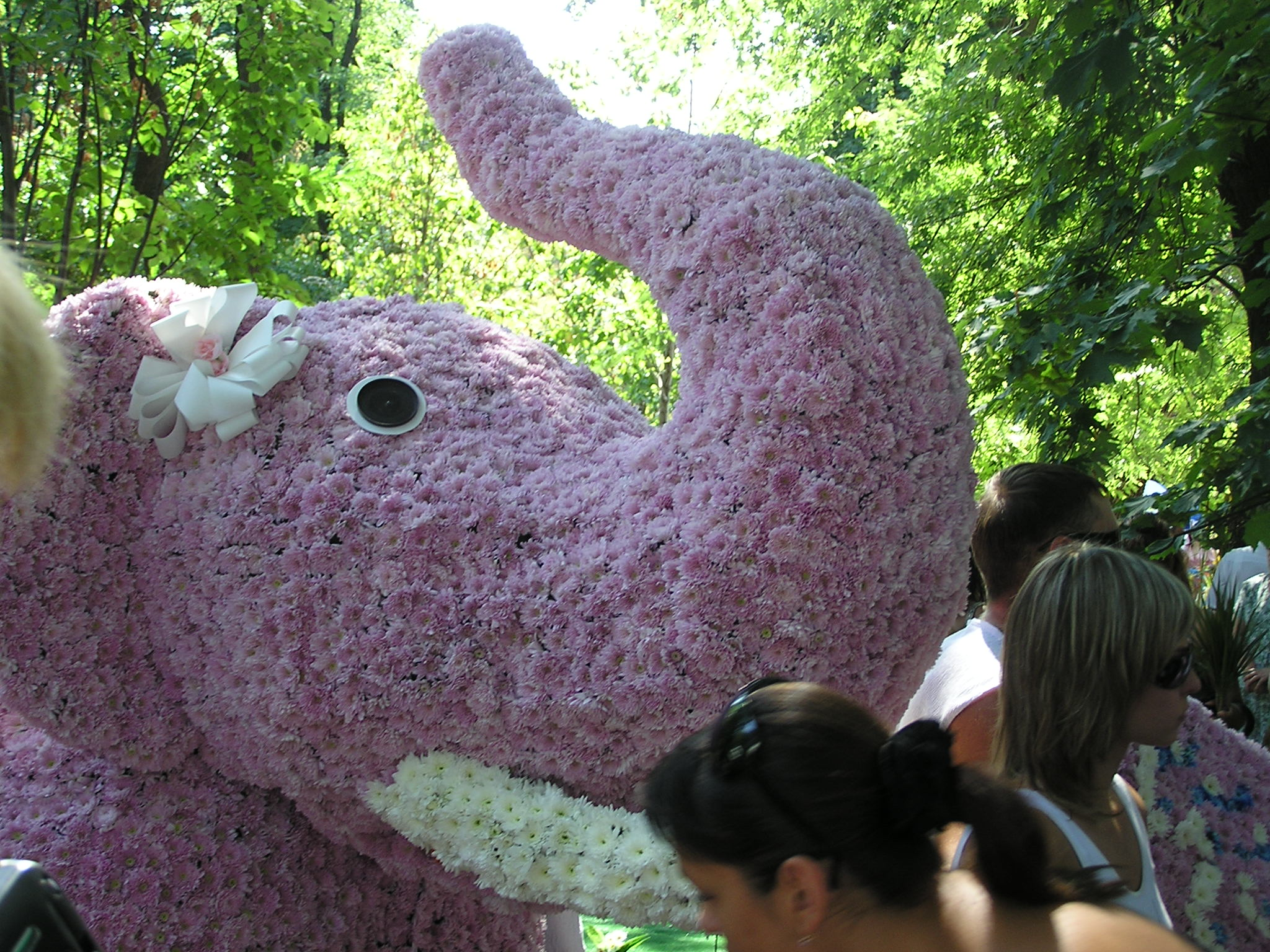выставка цветов в киеве в 2007: