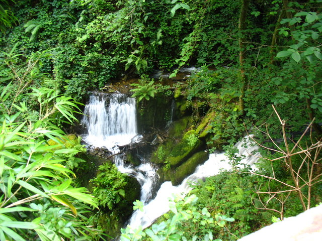 A waterfall in the gorge - geograph.org.uk - 545049