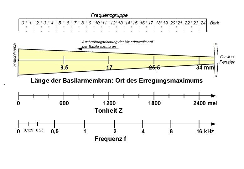 frequenzbereich des menschlichen ohrs