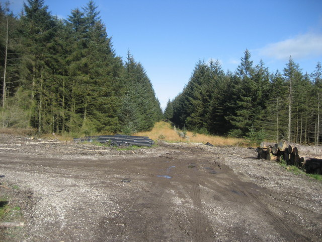 Another Scene in Gisburn Forest - geograph.org.uk - 595634