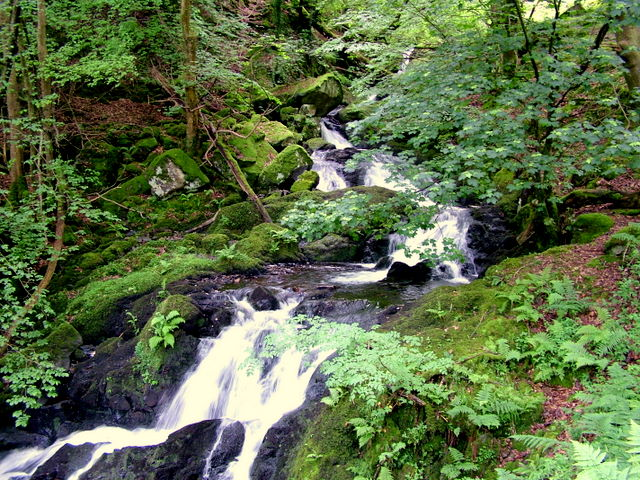 Arthog Waterfalls - geograph.org.uk - 610636