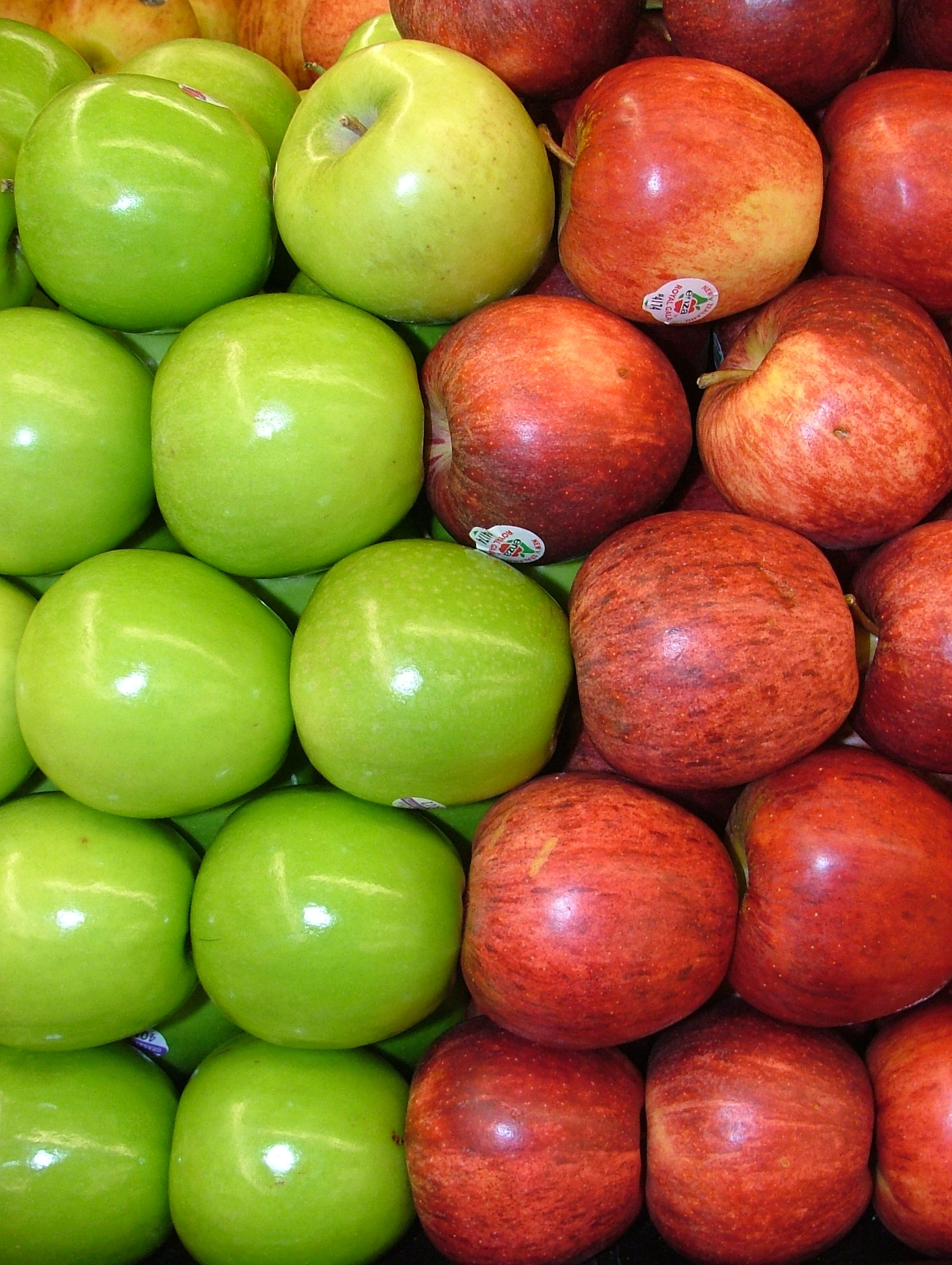 green and red apples. file:assorted red and green apples 2120px.jpg