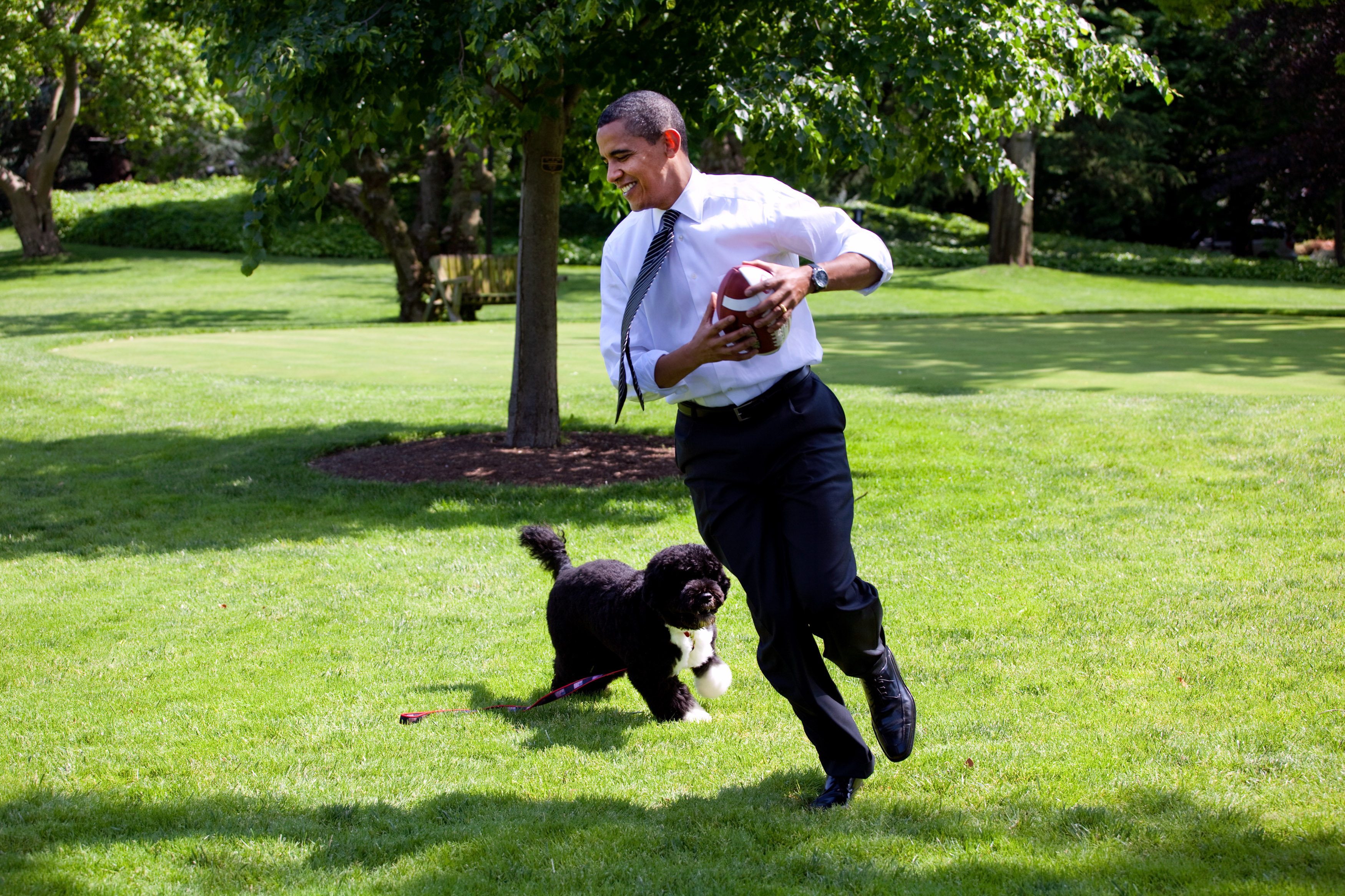 Description Barack Obama runs away from the family dog 2009-05-12.jpg