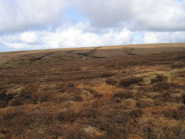 Barley Moor - geograph.org.uk - 144085