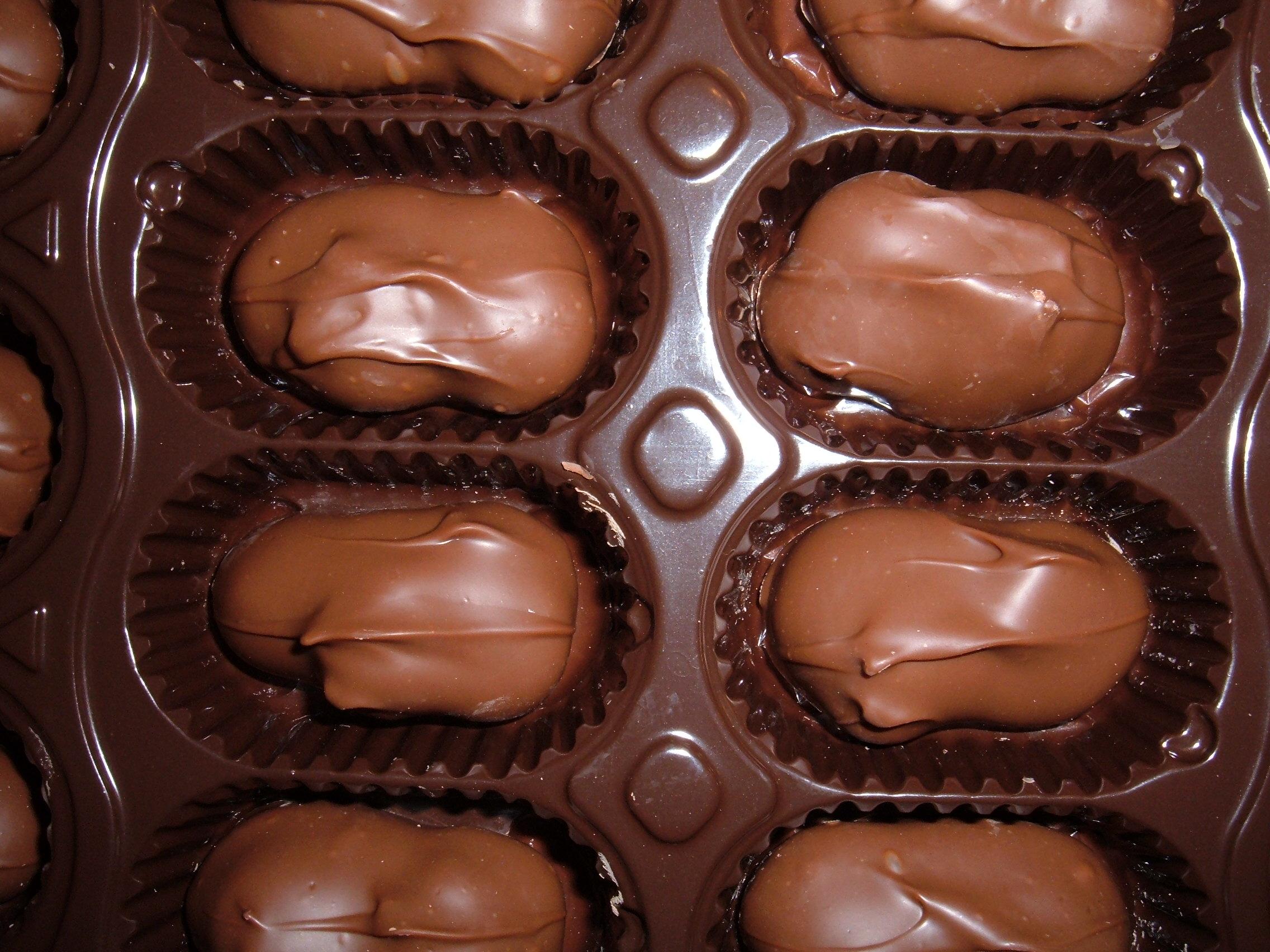 File:Chocolate-covered macadamia nuts.JPG - Wikipedia