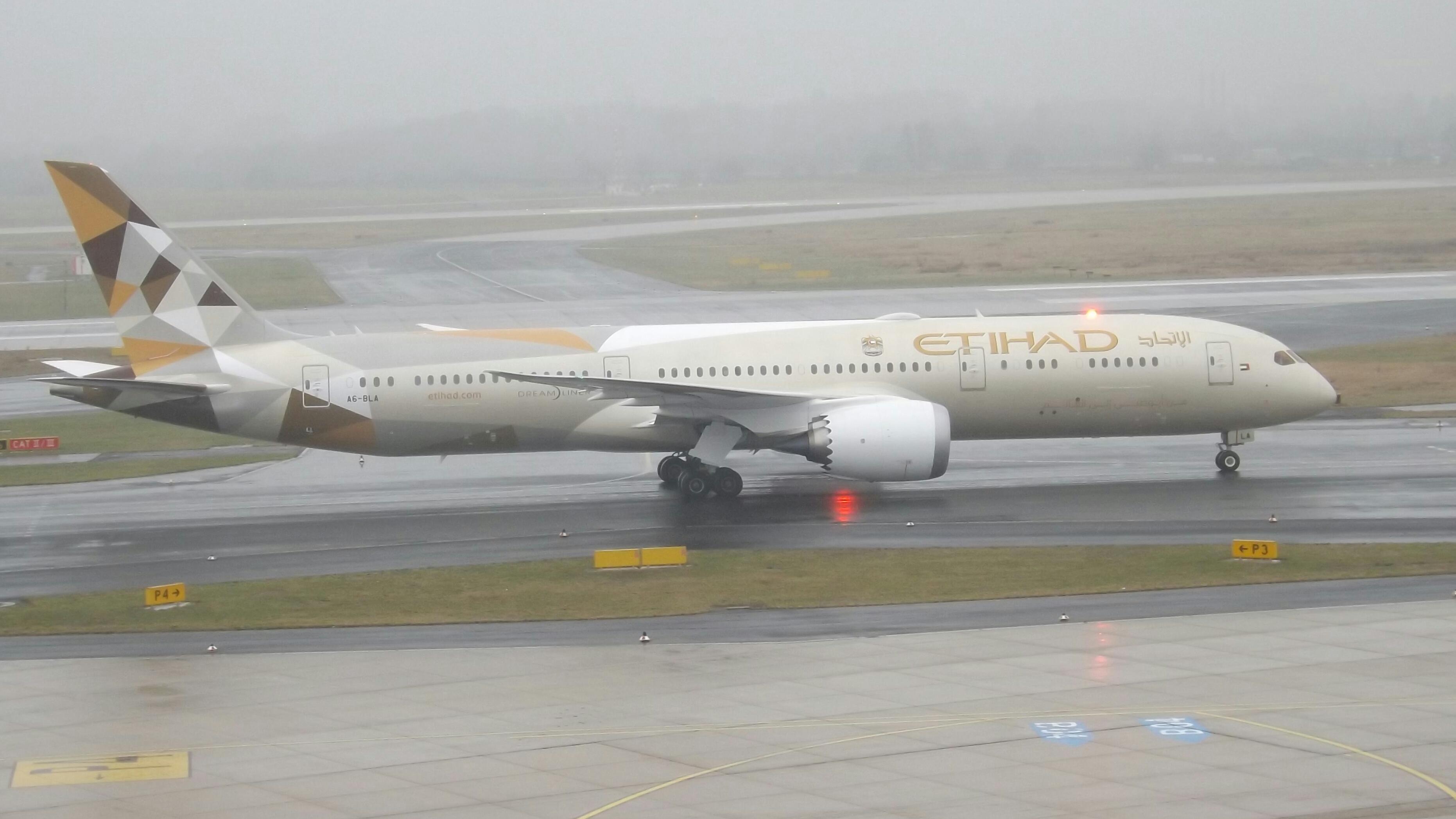 Image result for etihad airways Boeing 787-9