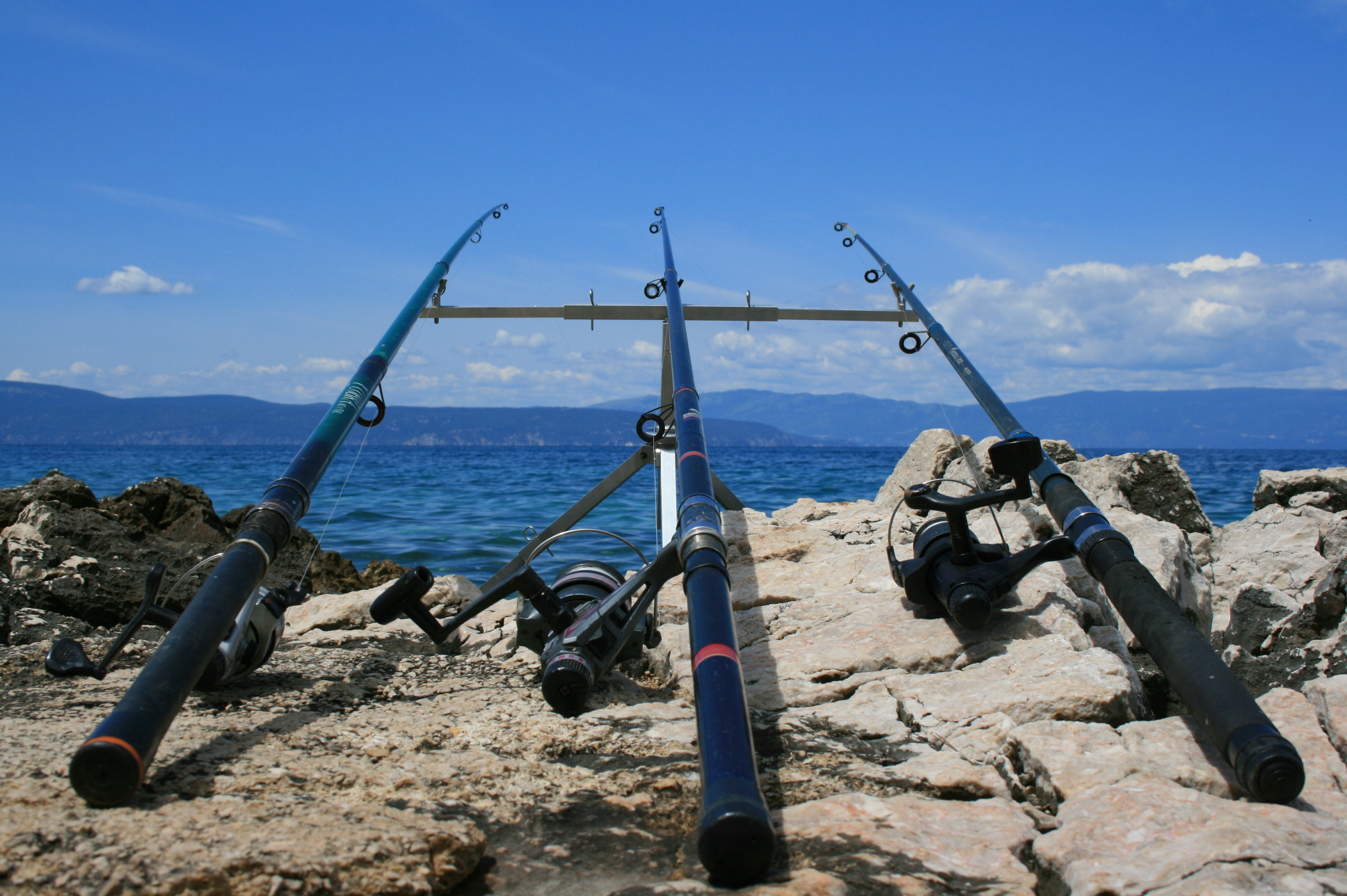 File fishing rods on the bank of wikimedia for Types of fishing poles