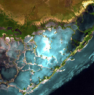File Florida Bay Satellite Map Jpg Wikimedia Commons