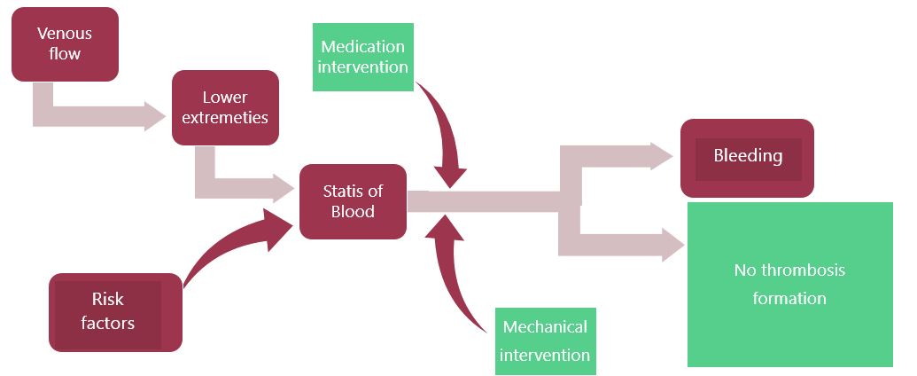 Flow Chart Hospital Management System: Thrombosis prevention - Wikipedia,Chart