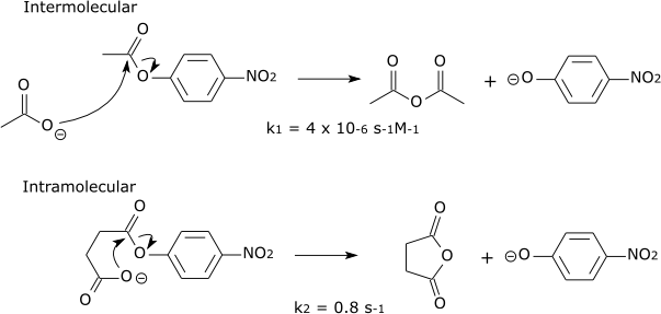 Inter vs intramolecular reaction rates.png