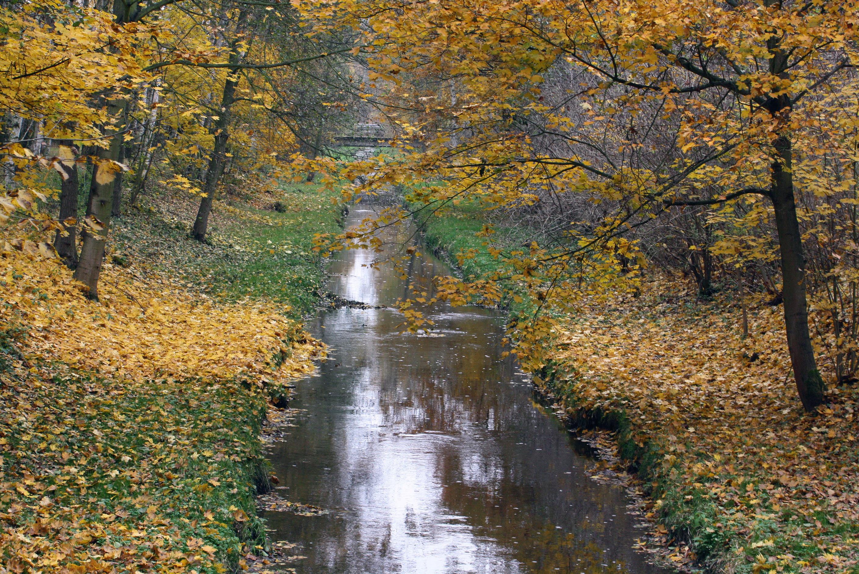 http://upload.wikimedia.org/wikipedia/commons/d/d5/Kanal_im_Herbst_im_Park_von_Franzensbad.JPG