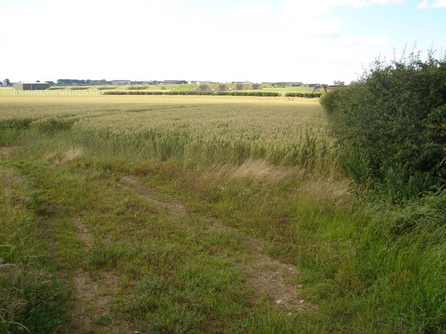 File:Looking towards R.A.F. Waddington - geograph.org.uk - 494553.jpg