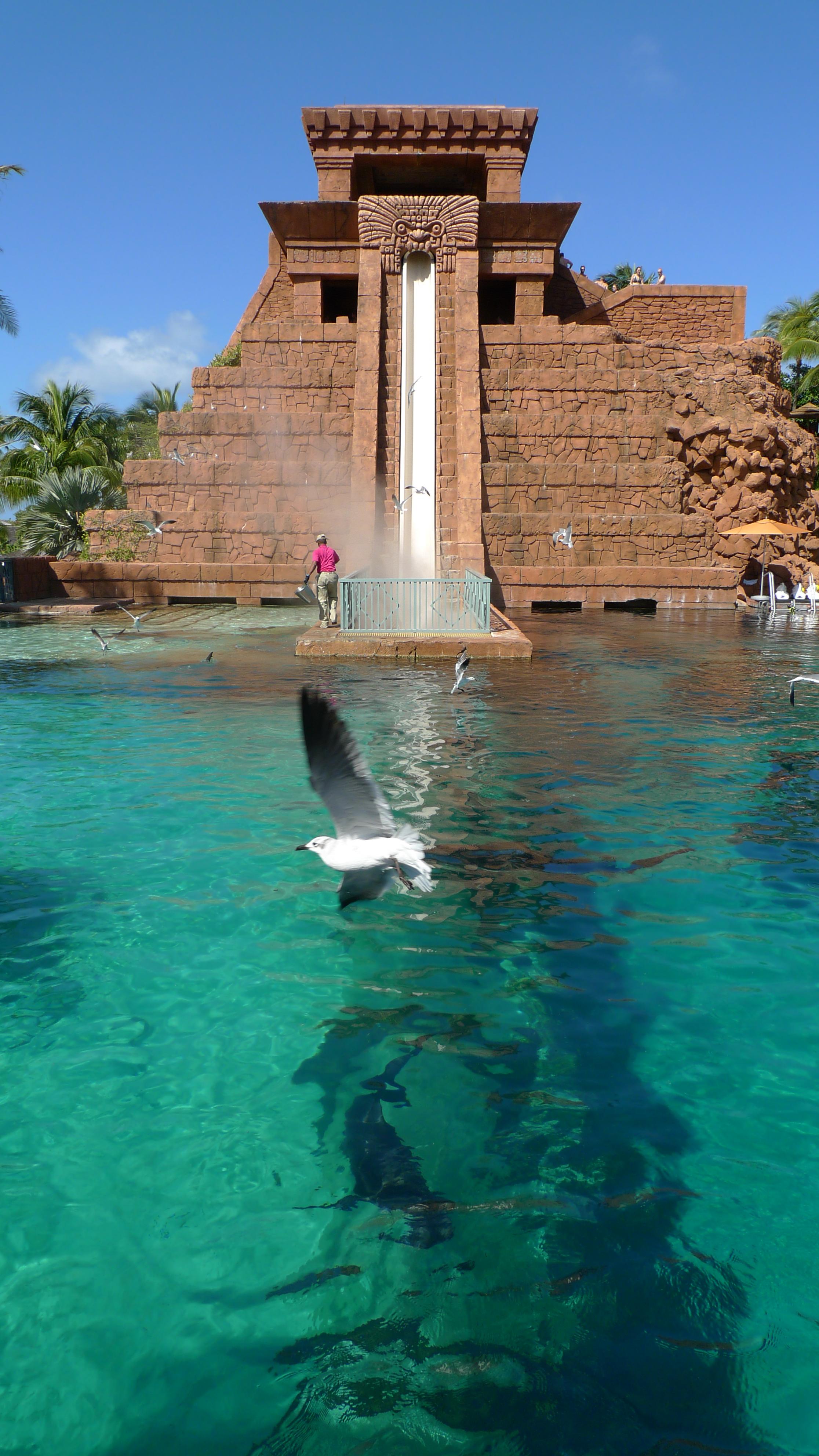 Atlantis Paradise Island Resort Food Cost
