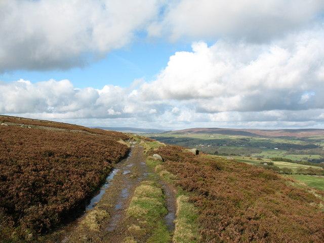 Moor edge path, Ilkley Moor - geograph.org.uk - 1020372