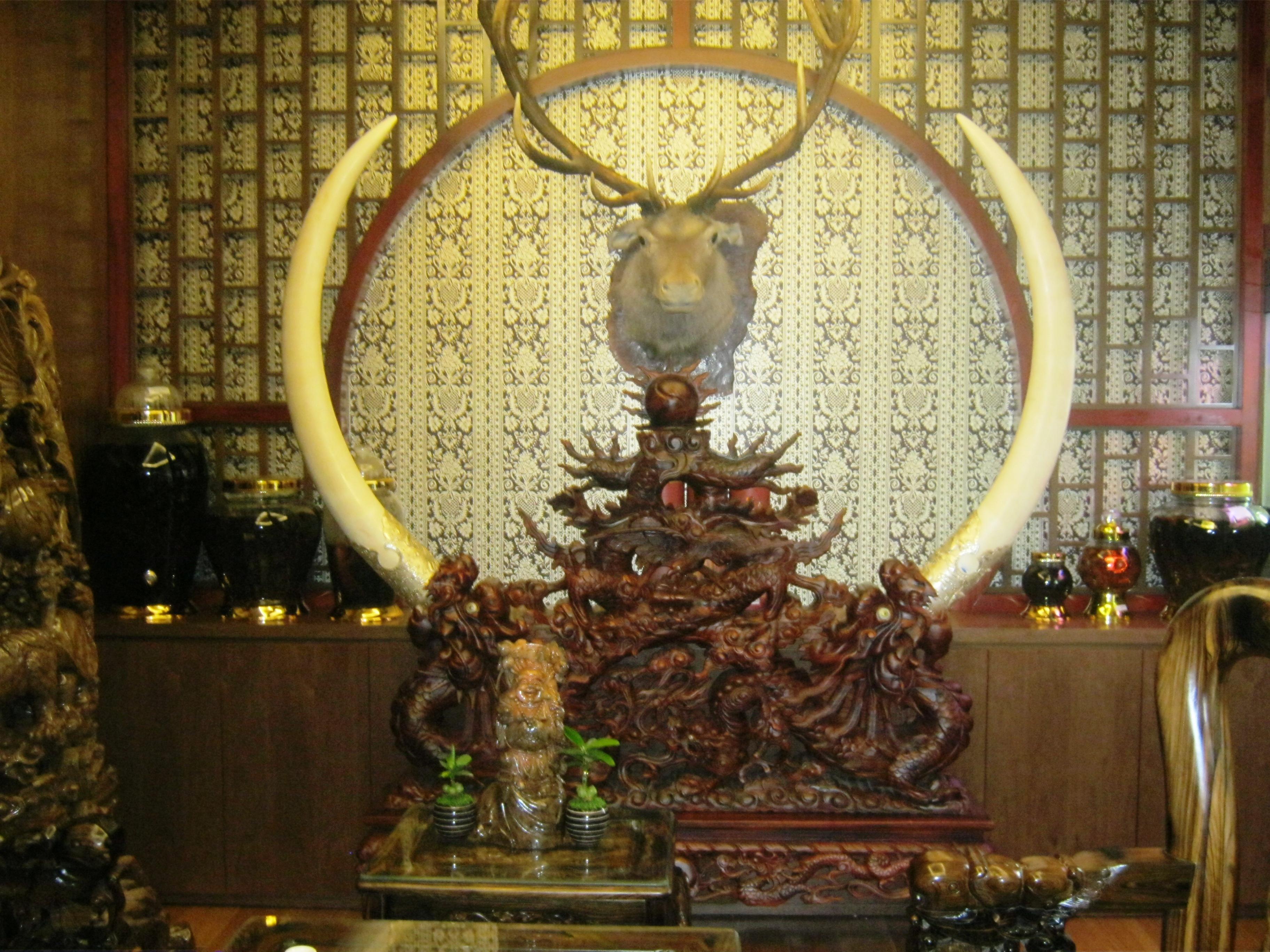 Ngà voi được dùng để trang trí nội thất 1fcb9f0ef61