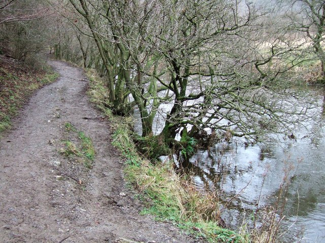 Path by the Wye - geograph.org.uk - 649809