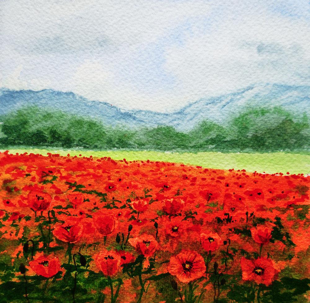 Poppy Field Painting Oils