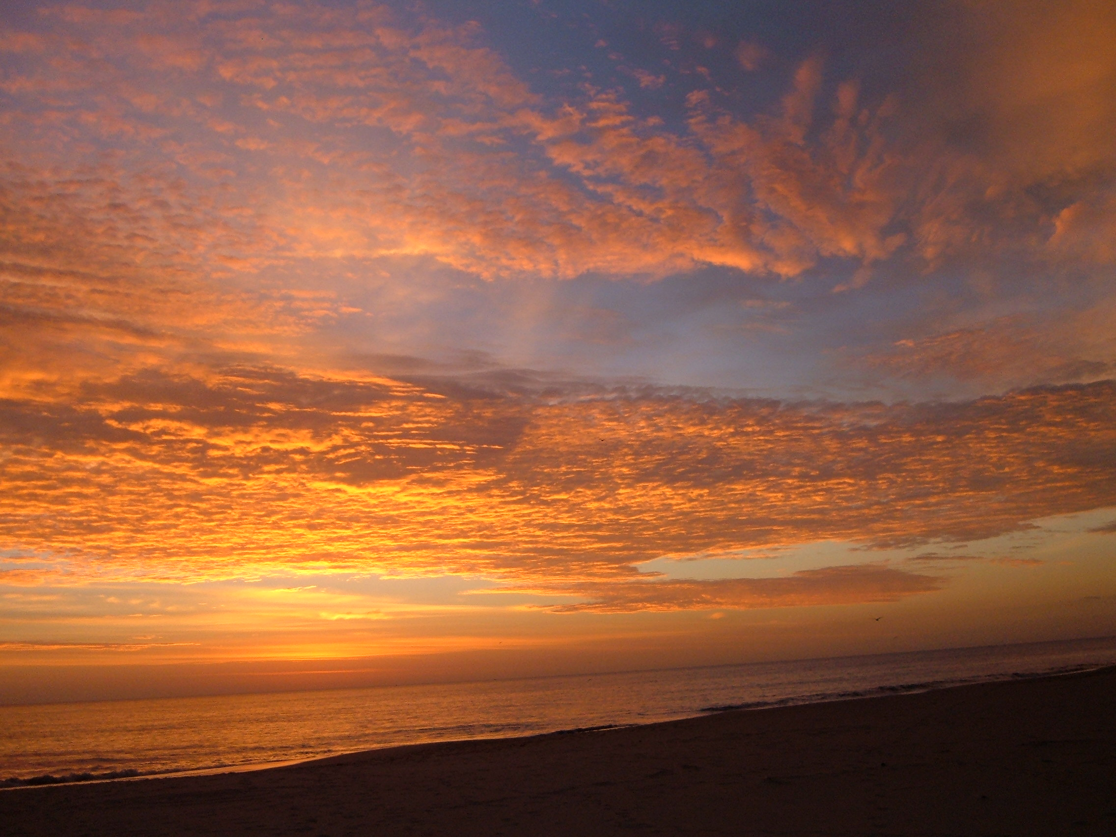 Virginia Beach False Cape State Park