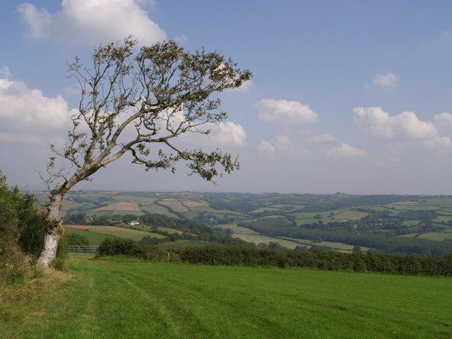 File:Taylor's Lane - geograph.org.uk - 555301.jpg