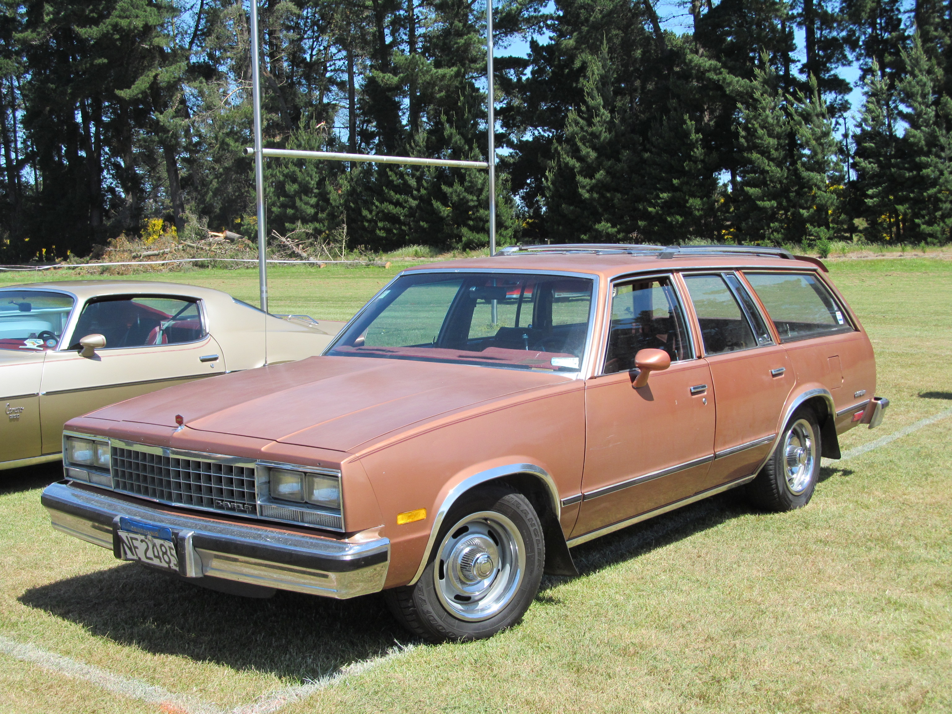 File:1982 Chevrolet Malibu Station Wagon (11265683595) jpg