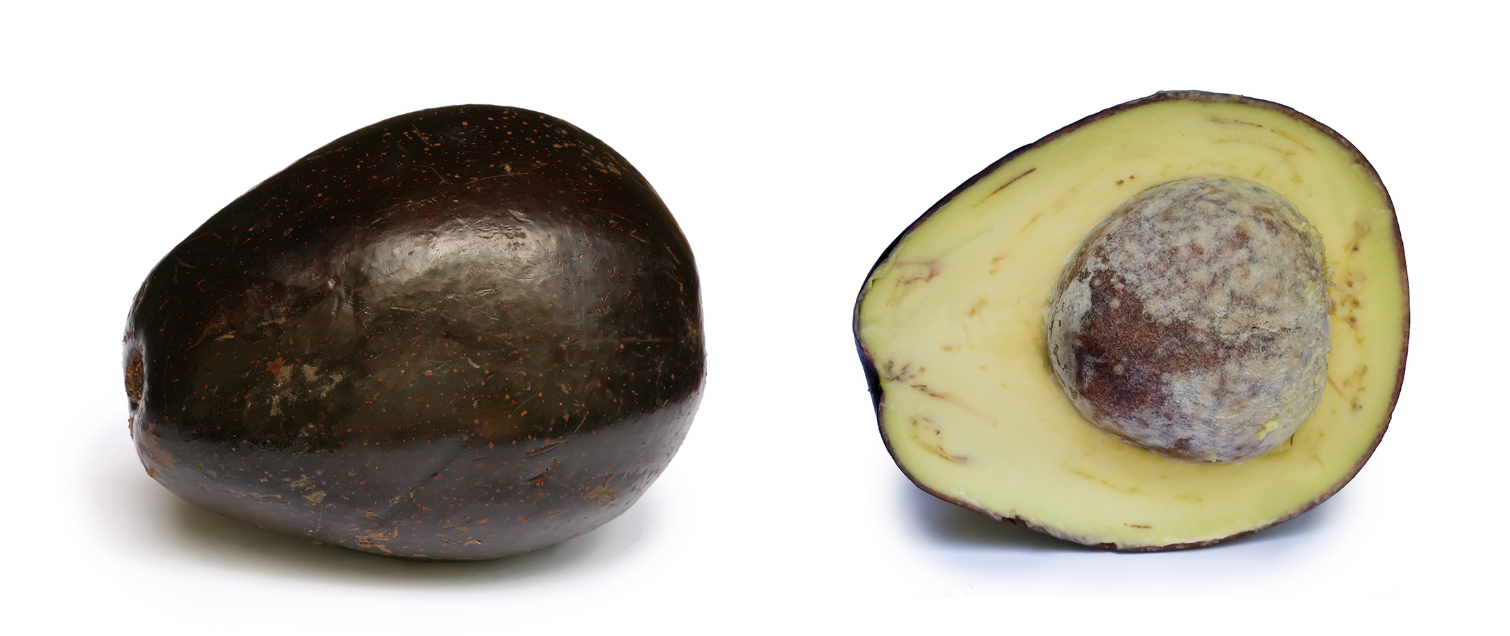 File:Avocado with cross section.jpg - Wikipedia, the free encyclopedia