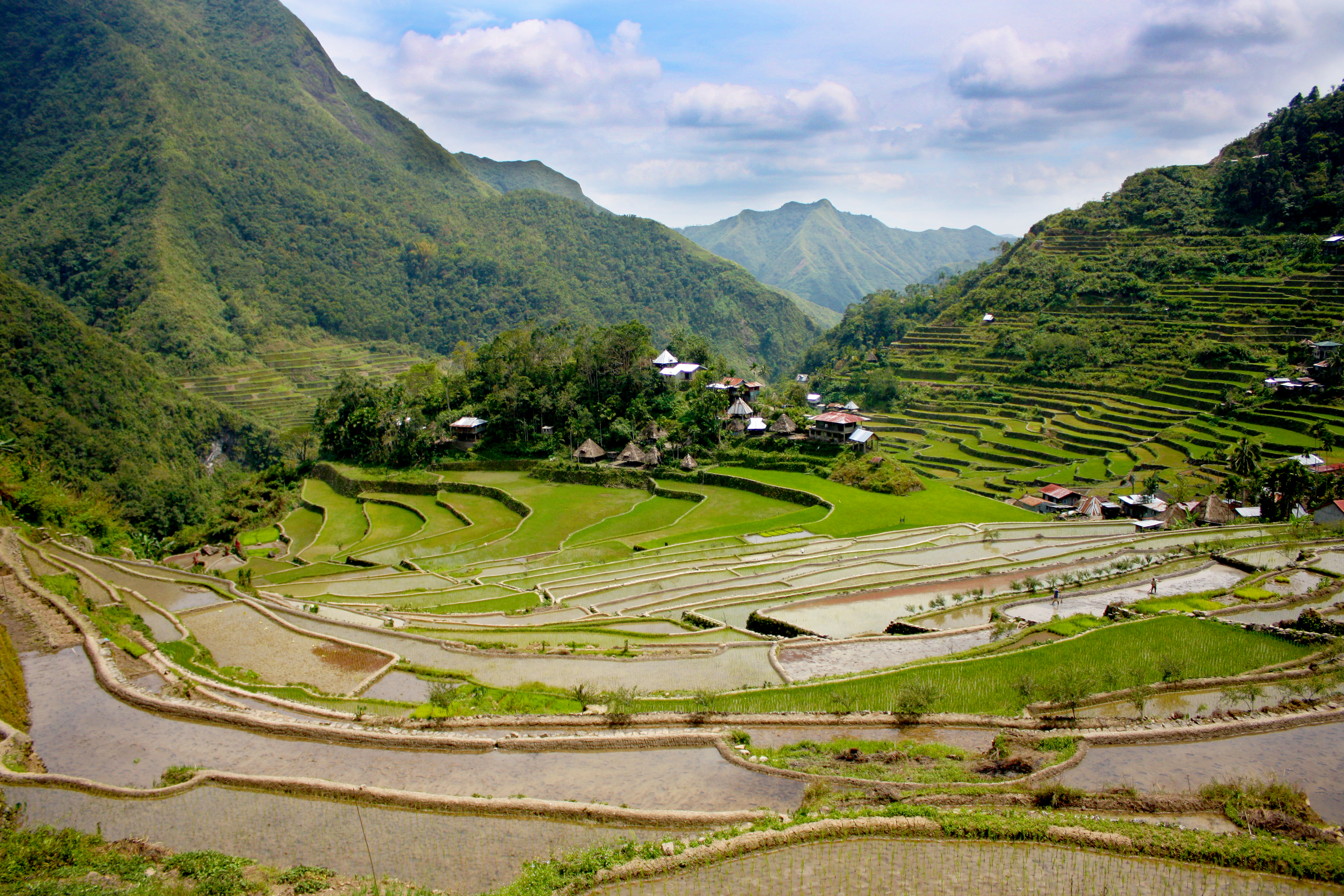 Ifugao wikiwand for What are terraces