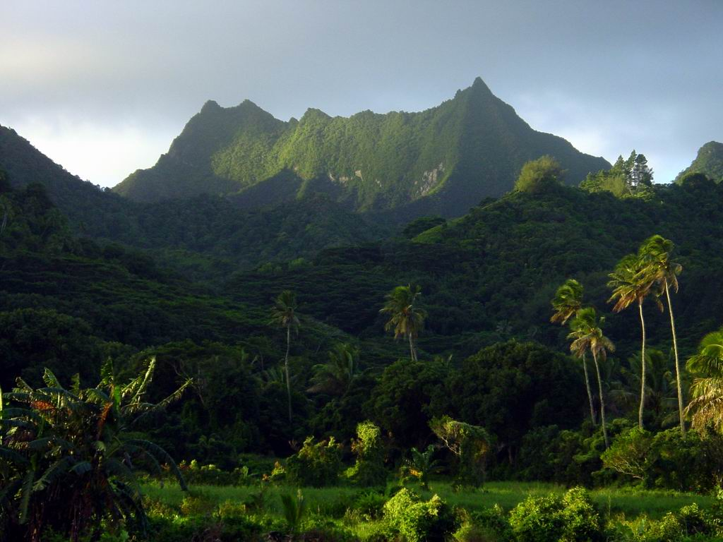 Facts About Cook Islands Landscape