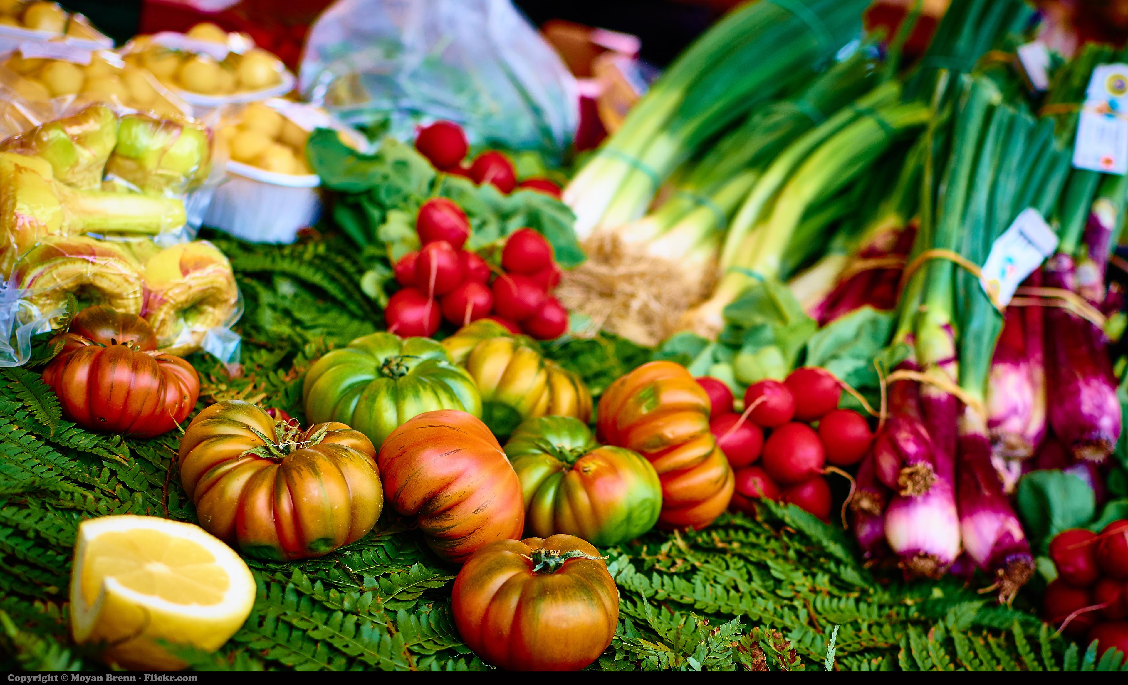 Mediterranean diet and sustainable food habits: the case of Neapolitan children