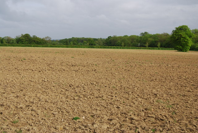 Archivo:Fallow field by Coldharbour Lane - geograph.org.uk - 1309079.jpg