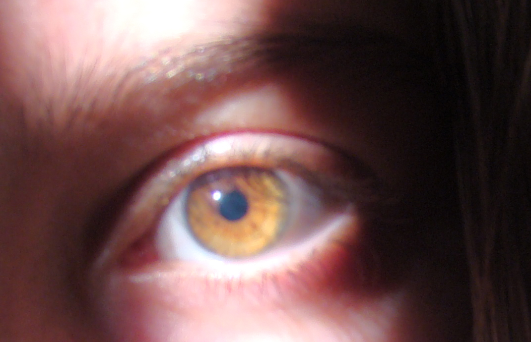 human amber eye color Quotes
