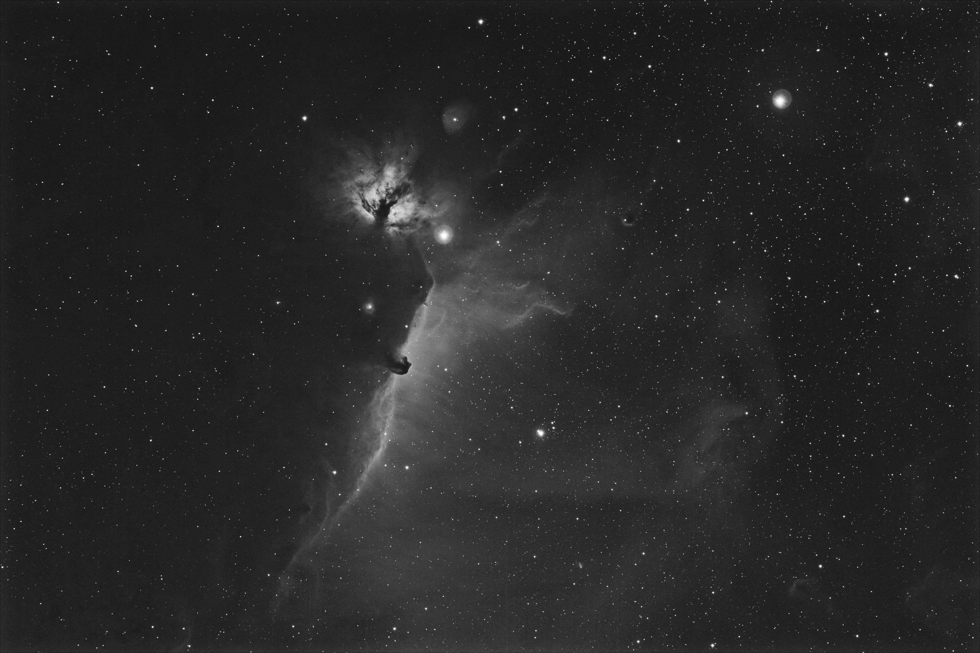 IC 434 - B 33 - NGC 2024