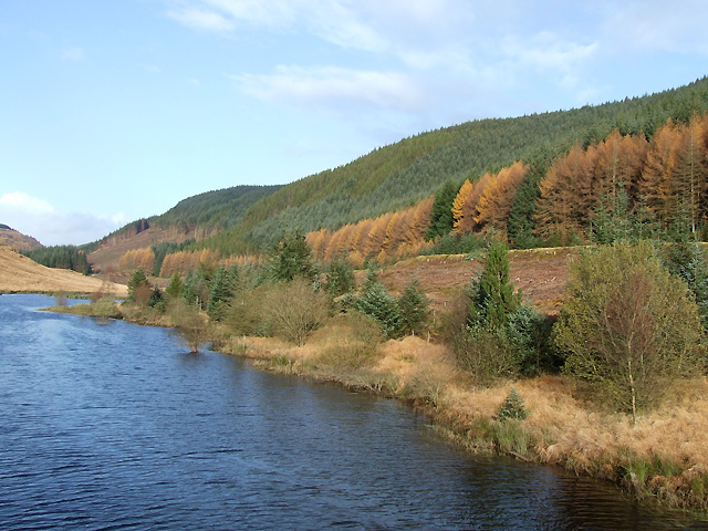 Llyn Brianne and the Tywi Forest, Powys - geograph.org.uk - 1041524