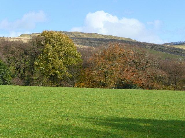 Looking towards Twmbarlwm - geograph.org.uk - 1041411