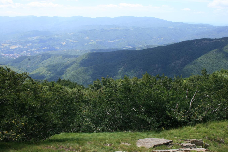 File:Monte-Falterona-t...