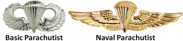 Two degrees of parachutists insignia